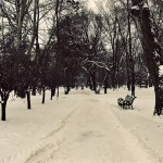 Winter Alley in Central Park, Kishinev.