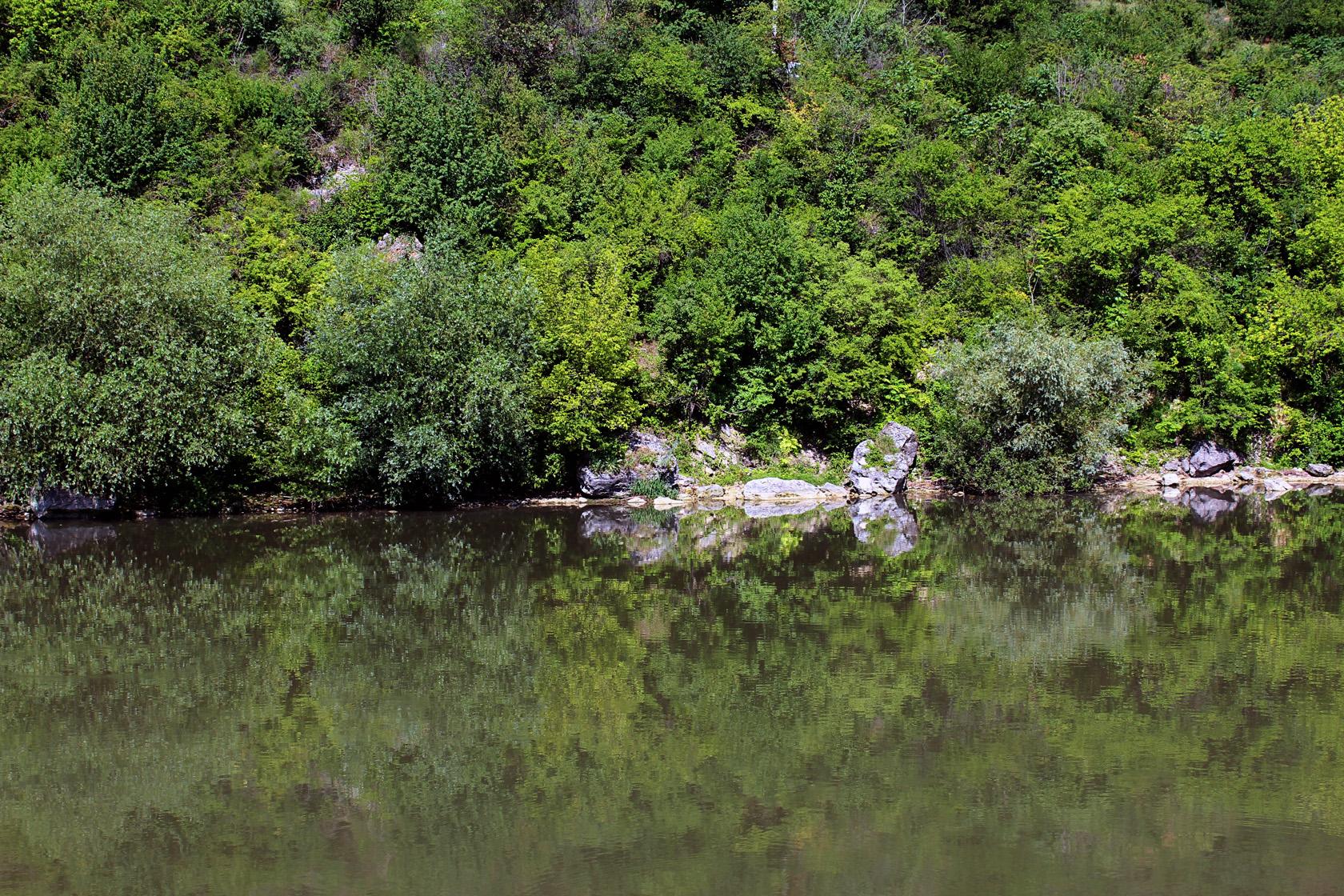 river trip (10)
