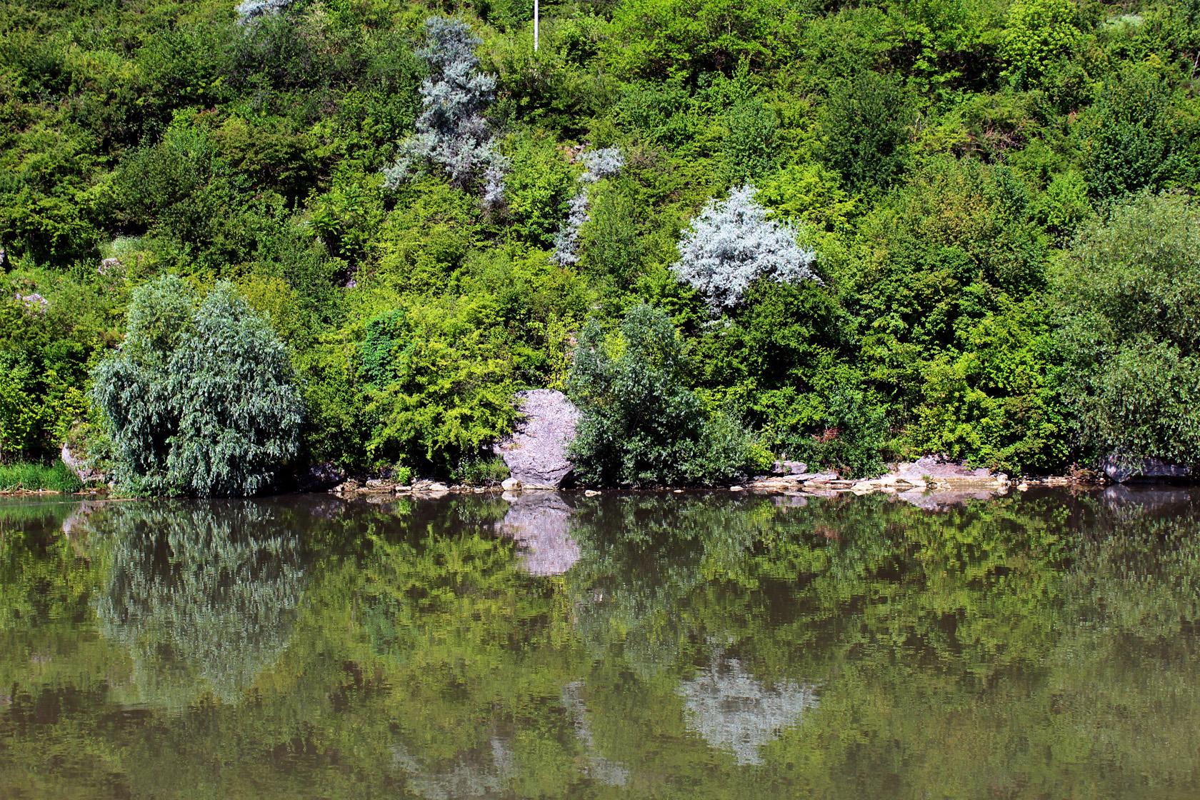 river trip (11)
