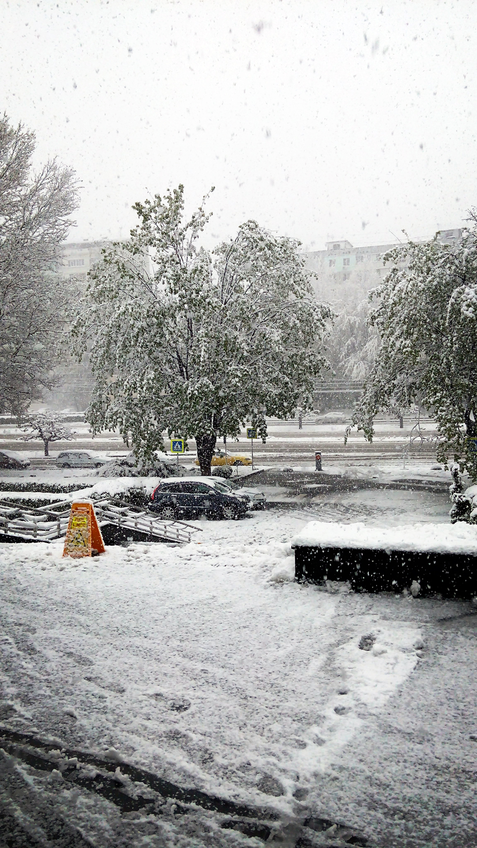 april snow in chisinau (14)