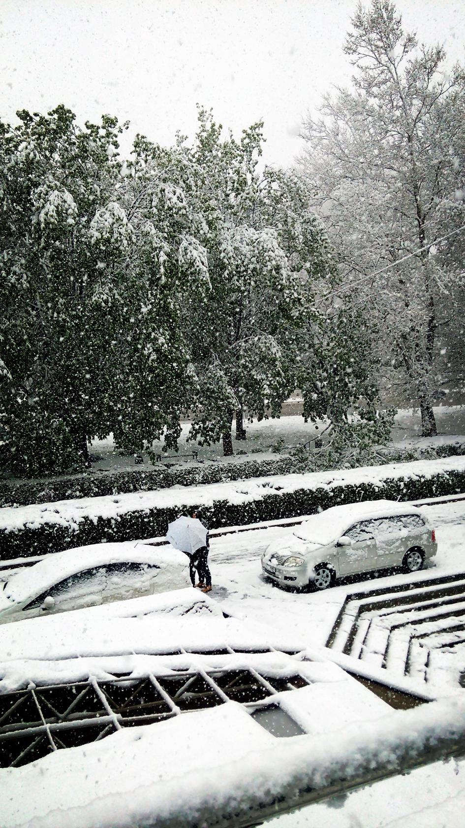april snow in chisinau (18)
