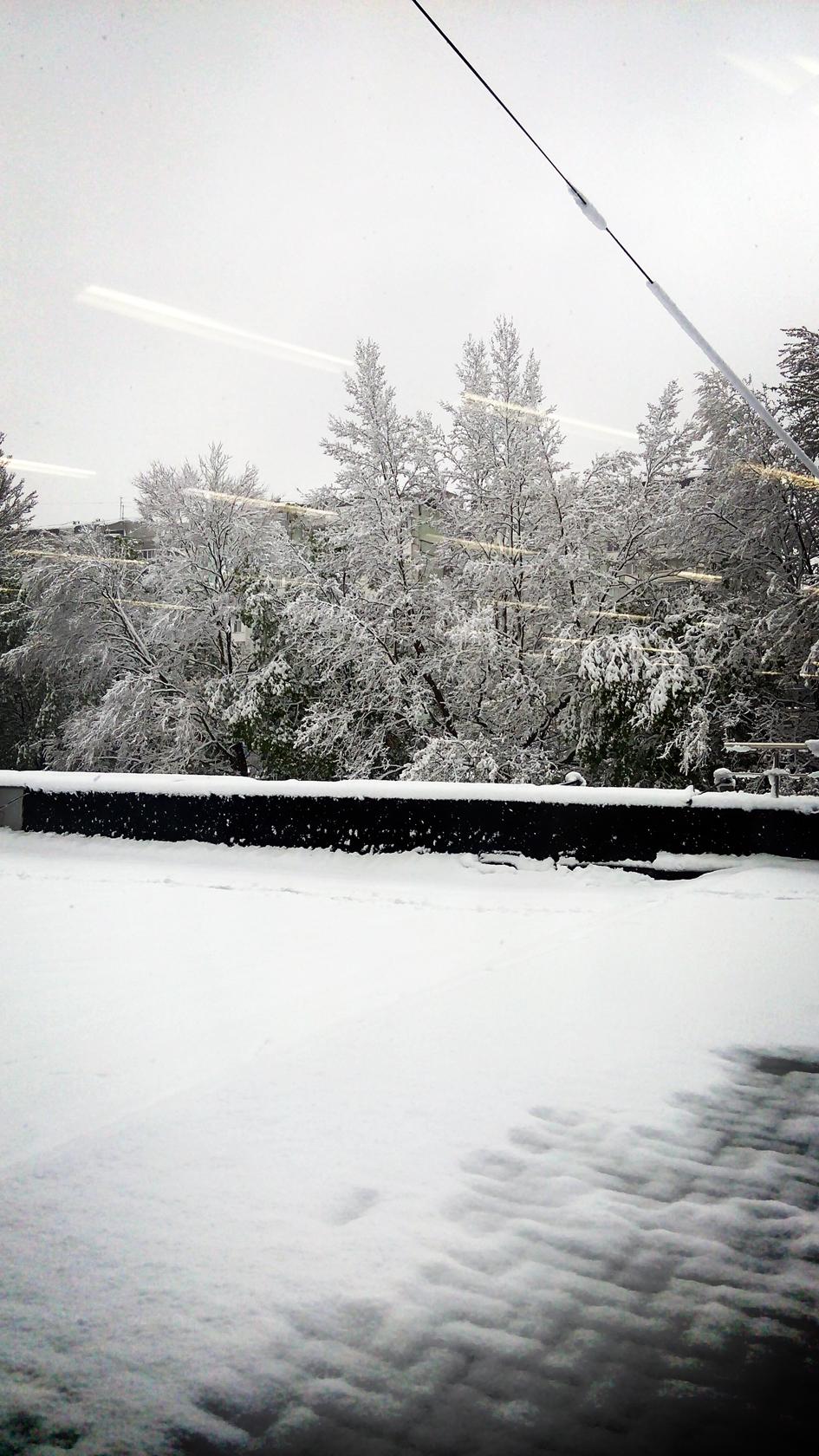 april snow in chisinau (19)