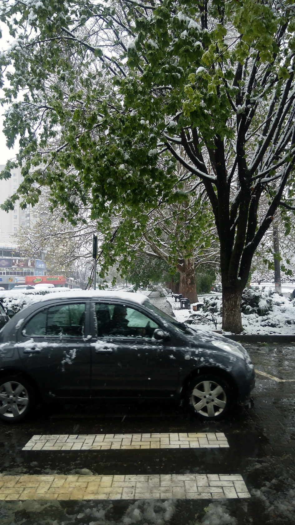 april snow in chisinau (26)
