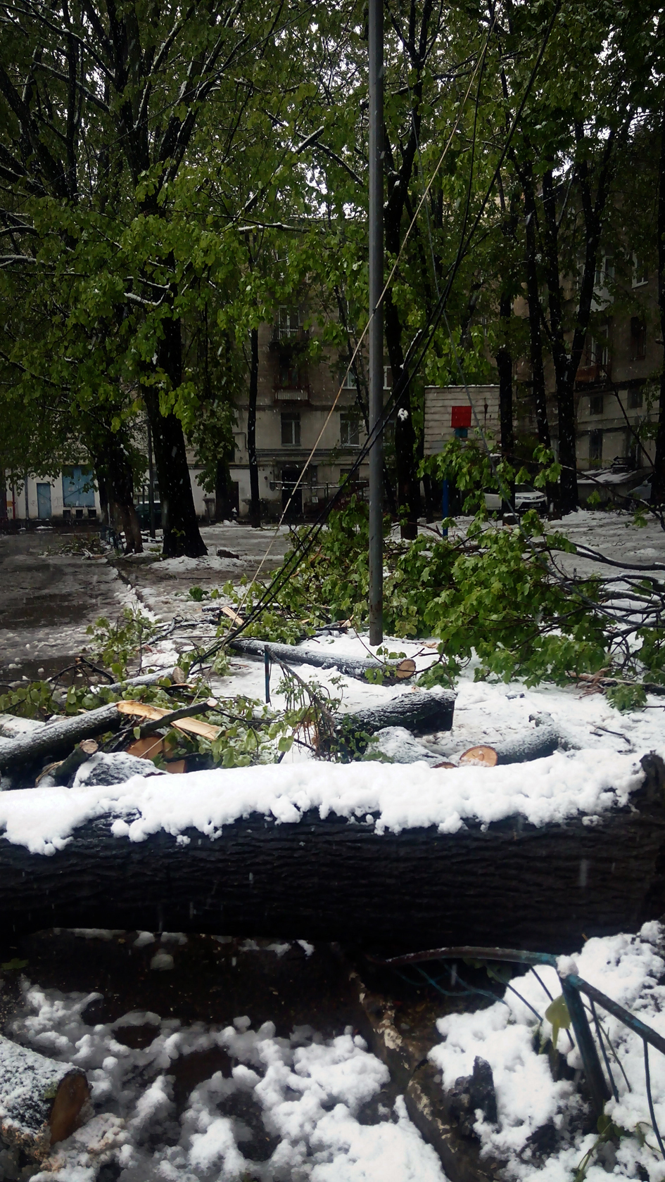 april snow in chisinau (32)