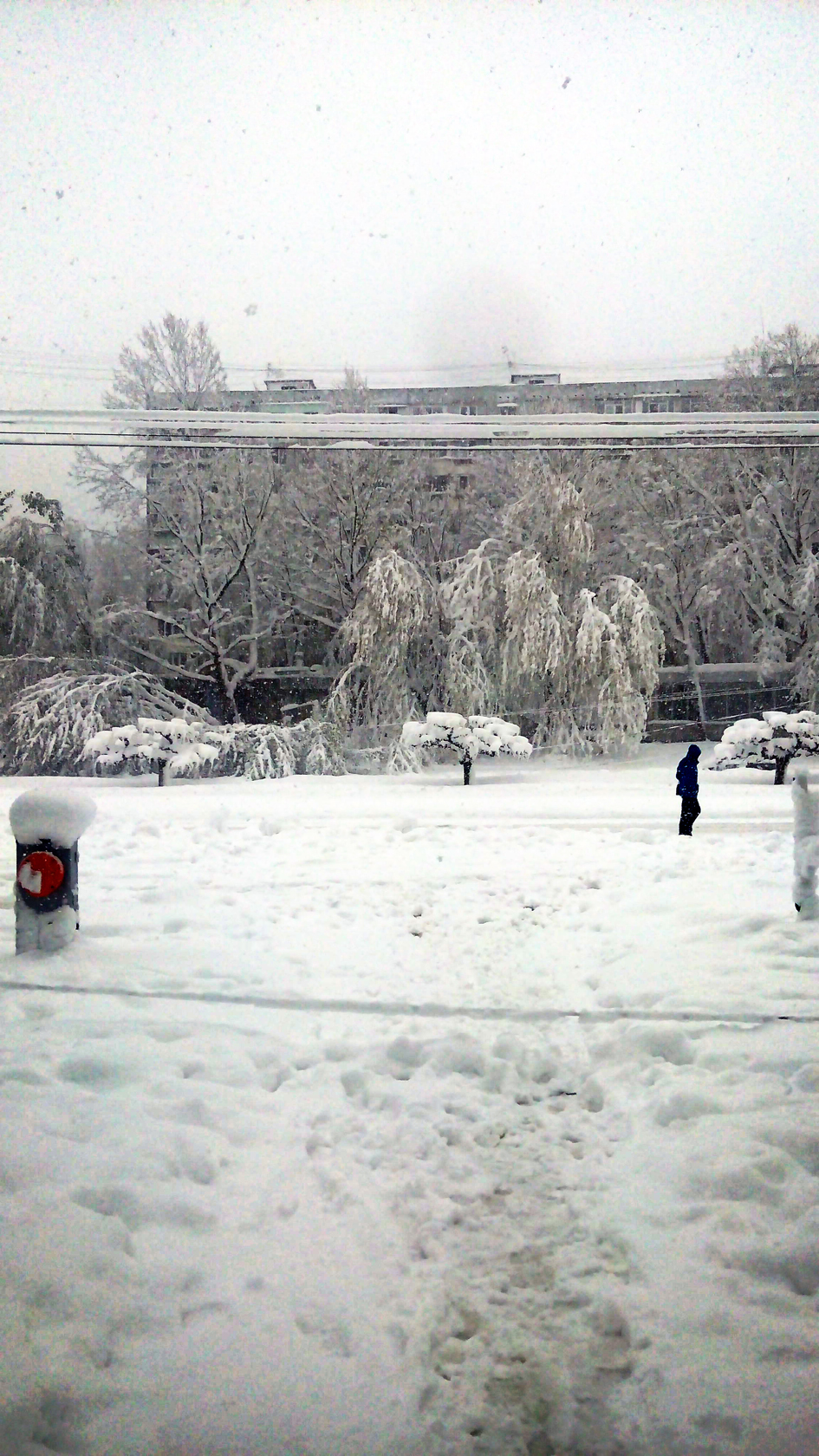 april snow in chisinau (36)