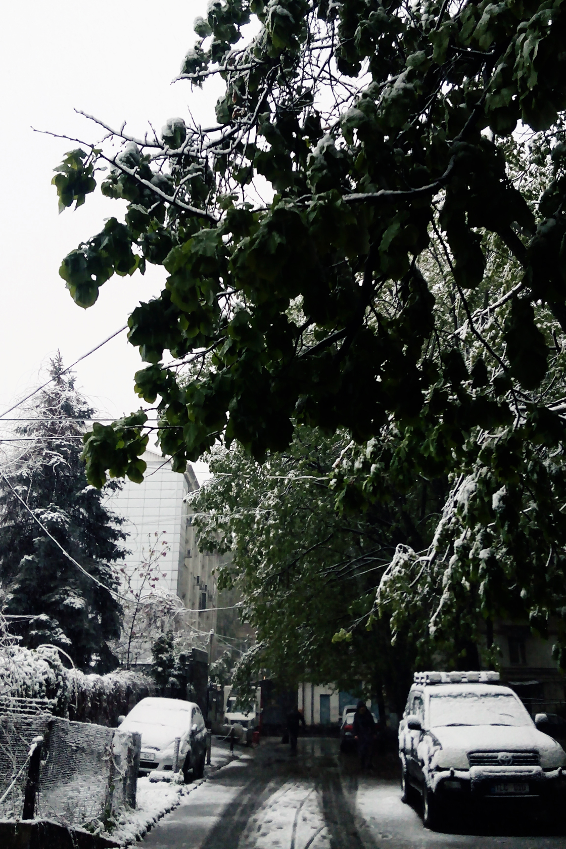 april snow in chisinau (4)