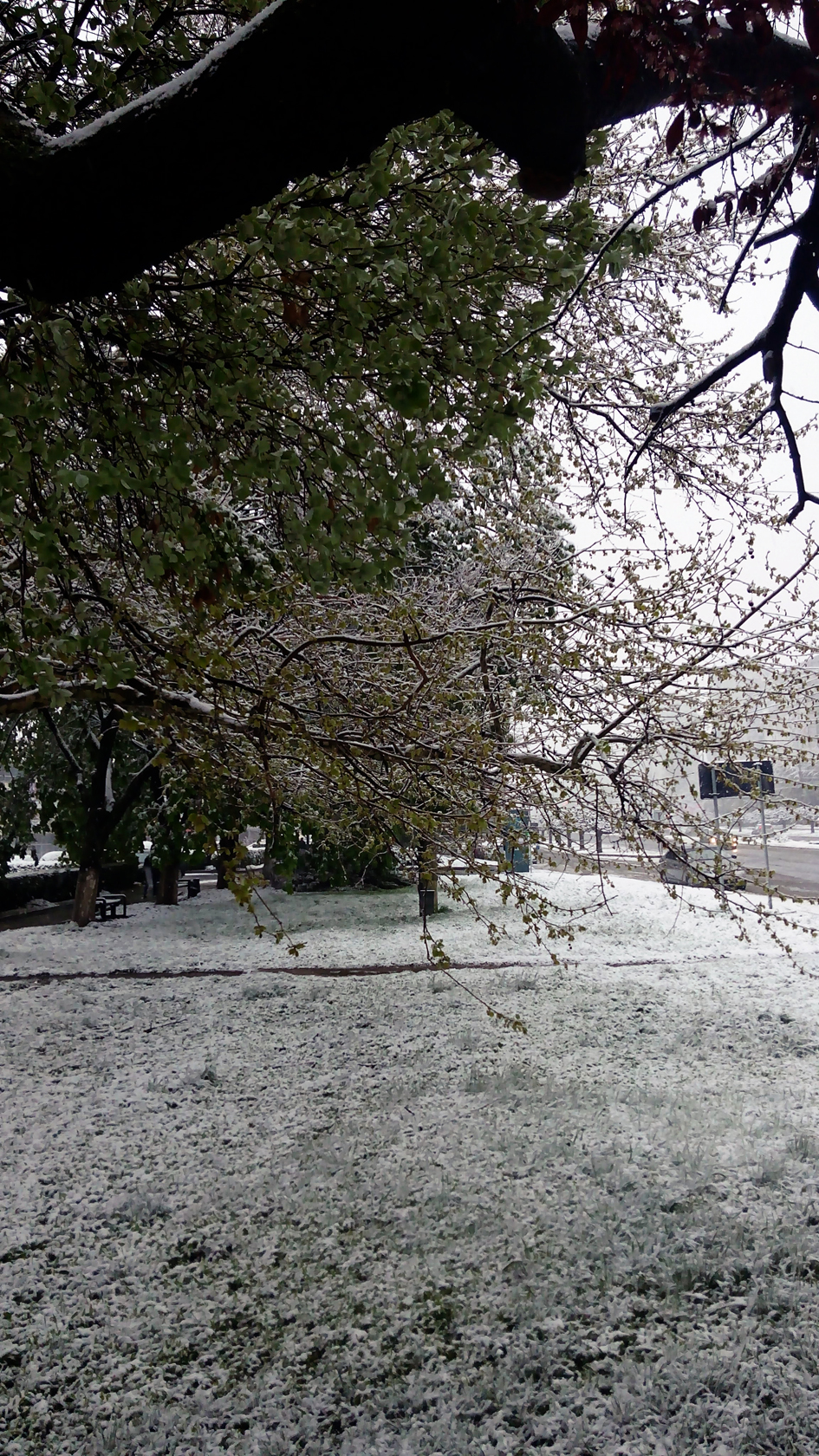 april snow in chisinau (9)