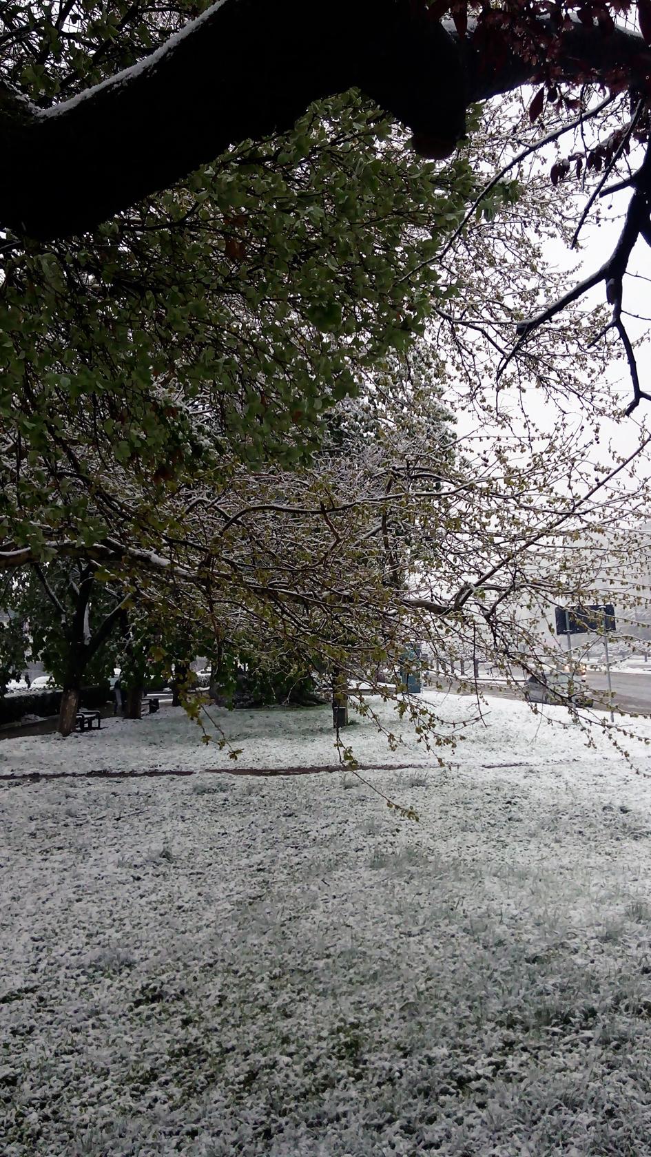 april snow in chisinau (9)
