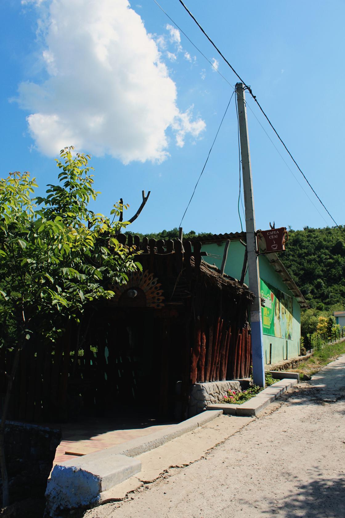 saharna (16)